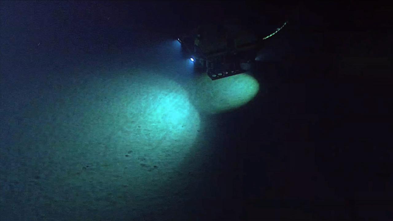 The deep ocean ocean today publicscrutiny Choice Image