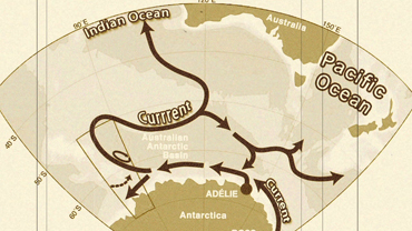 News of the Day: Southern Ocean Current